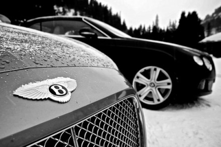 in-search-of-snow-bentley